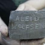 Aleid Wolfsen